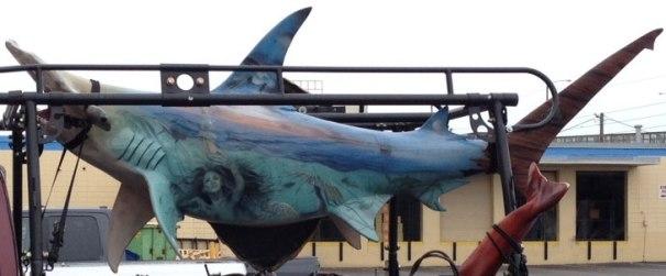 Shark-3D